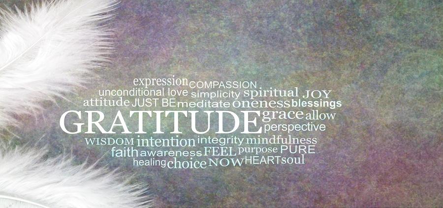 Capture Your Grief – Tag 17: Dankbarkeit