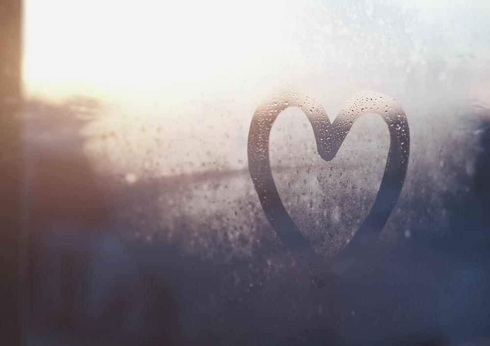in der trauer liebe finden